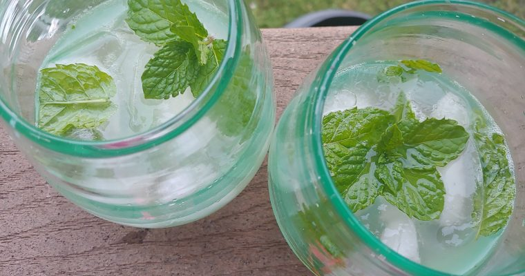 Honey Mojitos Recipe